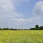 Au loin, le village de Nouan-sur-Loire