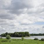 Confluent de la Maine et de la Loire
